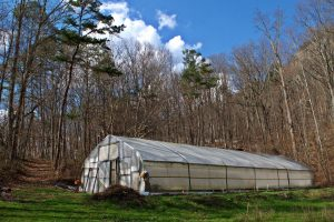 Greenhouse at Sequatchie Valley Institute Spring Planting Season Life on Nature Reserve
