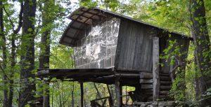 como se llama past art gallery natural building structure
