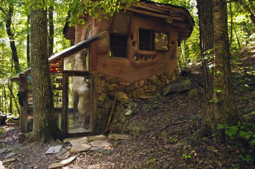 Mud Dauber Natural Building Structure SVI