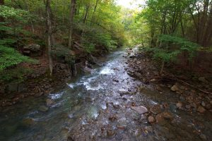 On Bridge, Creek, Entrance, Sequatchie Valley Institute, Art Gallery, Peaceful Hiking Near Chattanooga